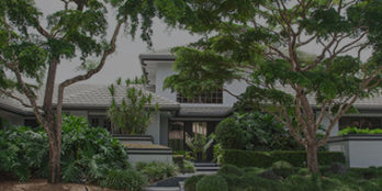 Taking Care Of Your South Florida Landscape