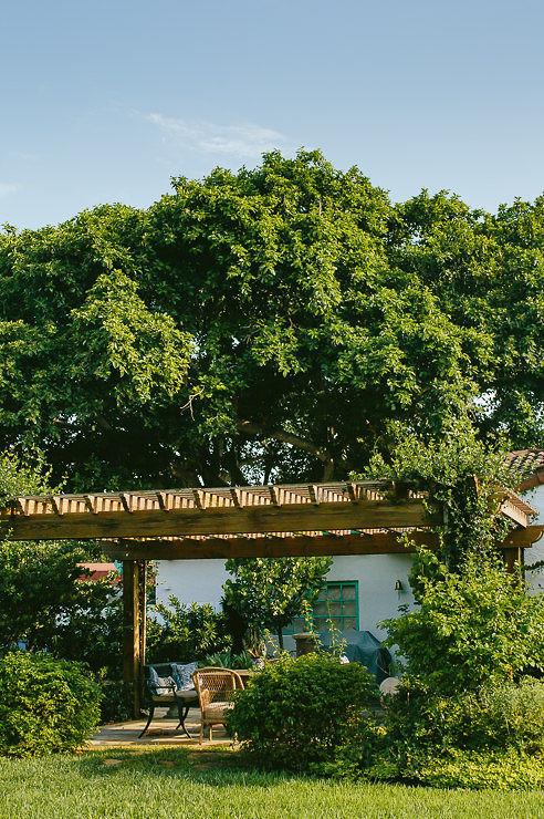 The Best Landscape Designers For Miami Area And South Florida Zito Landscape Design Company